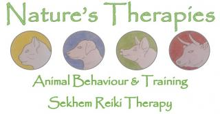 Logo for Nature's Therapies