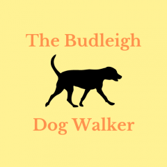 Logo black dog on a yellow background