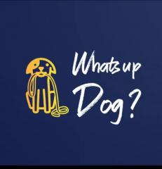 Logo sitting dog holding a lead in its mouth