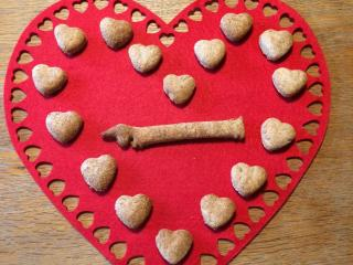 Finished dog biscuits displayed on a heart background