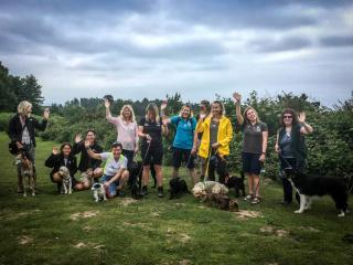 Group of people and dogs on the heaths