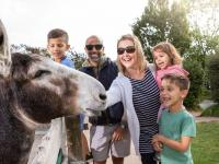 Family meets friendly donkey on adventure trail