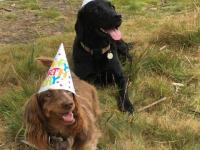 Maisie and Patti in their party hats