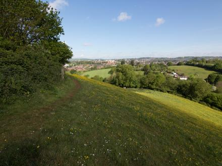 View at Ludwell Valley Park