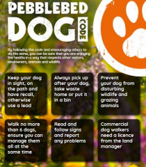 Front Cover of the Pebblebed Dog Code